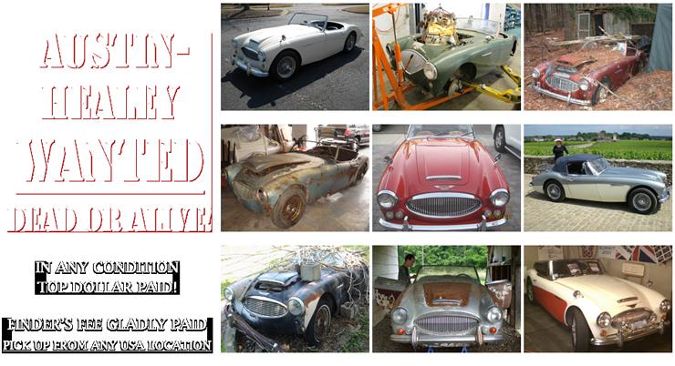 Beverly Hills Car Club - Austin Healey