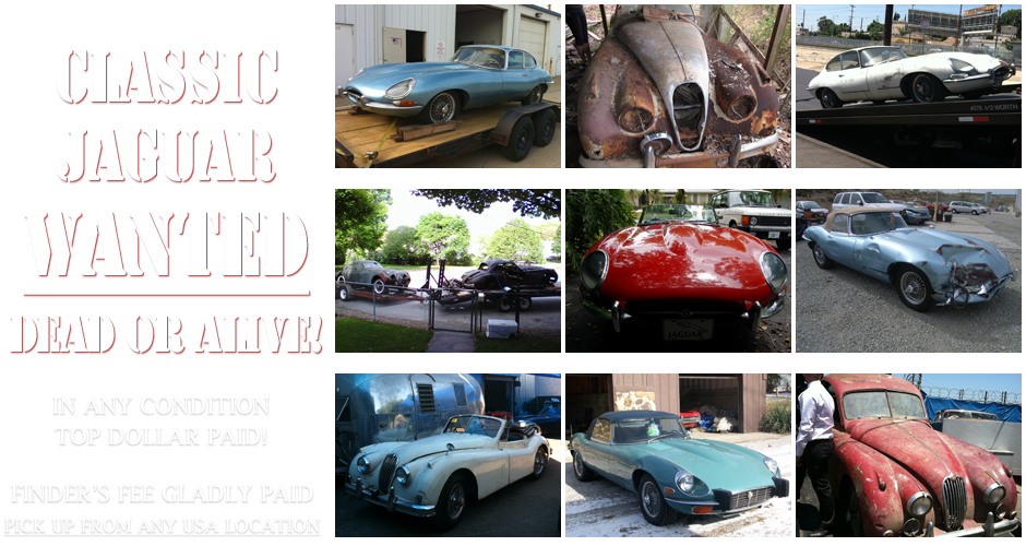 Beverly Hills Car Club - Jaguar